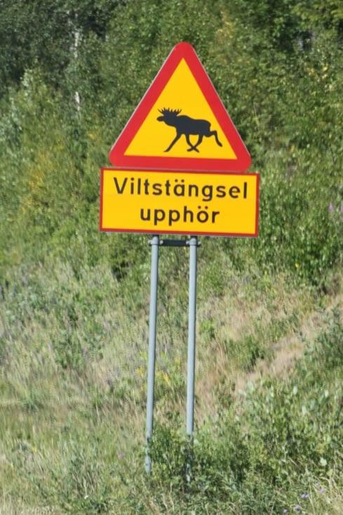 No doubt, we're in Sweden !