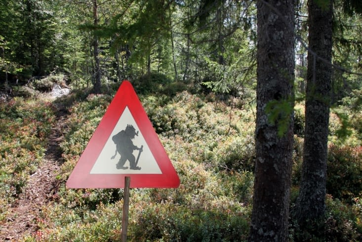 Dans la descente, attention aux trolls !