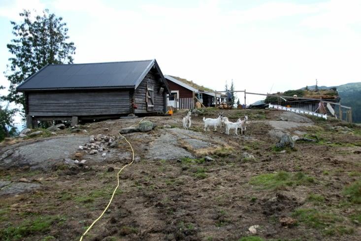 L'été, 2 personnes vivent ici pour traire les 6 vaches, fabriquer le fromage et le beurre.