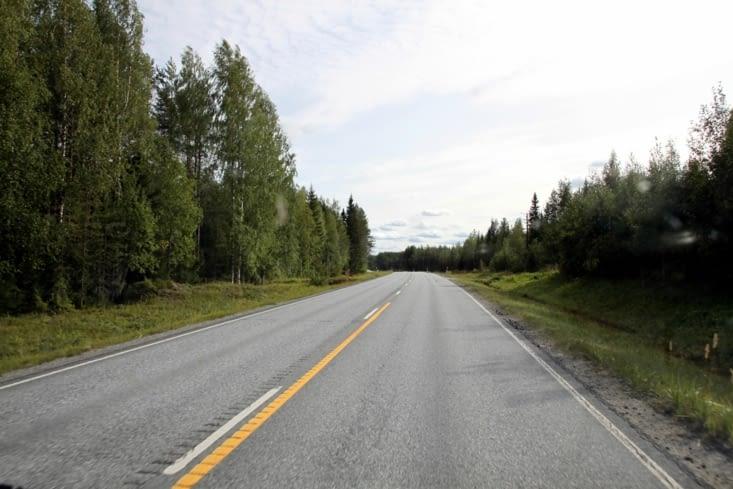 La route se montre assez monotone : de la forêt, de la forêt et encore de la forêt.