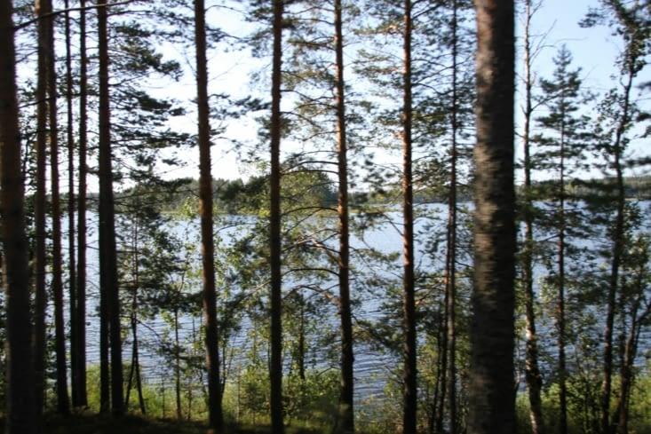 Et quand il n'y a pas de forêt, il y a des lacs.