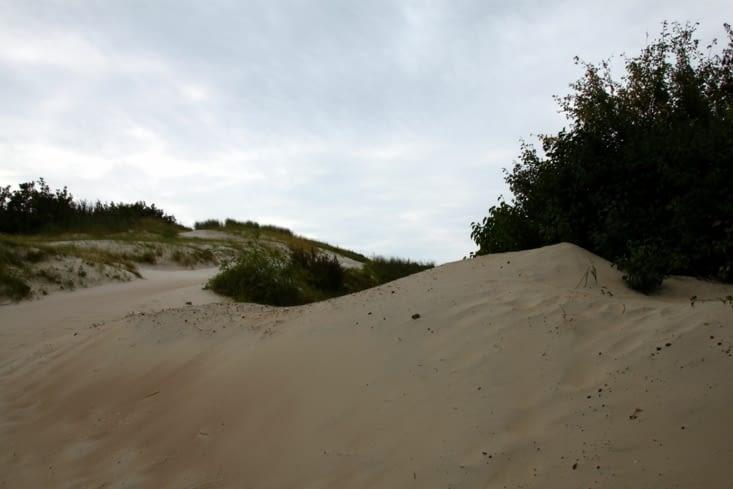 Une magnifique piste cyclable serpente tout le long de la dune.