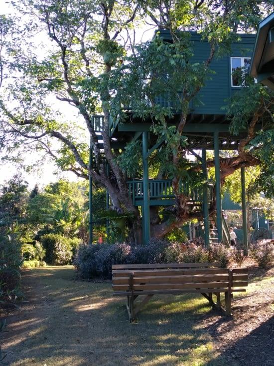 Et une cabane dans les arbres