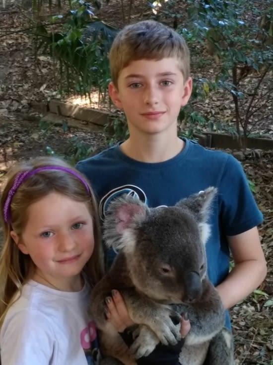 Les enfants ont réalisé un rêve : toucher un koala