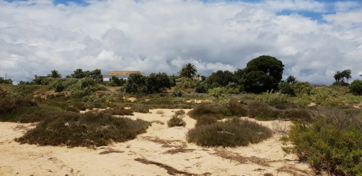 CABANAS DE TAVIRA , la lagune