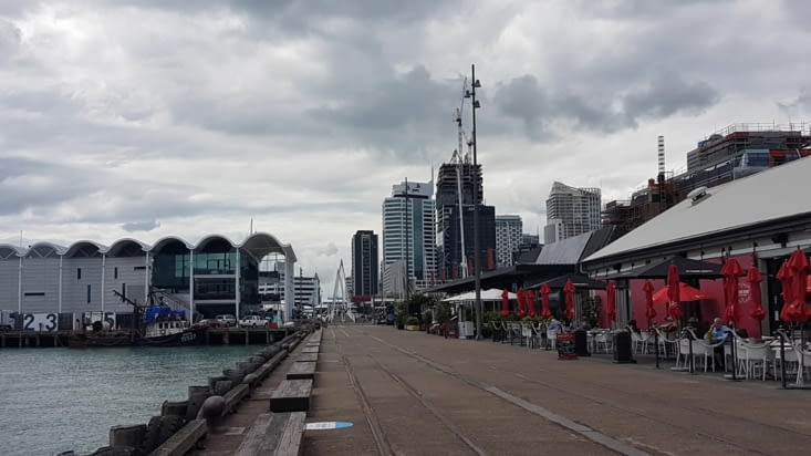 Promenade dans le port ce matin