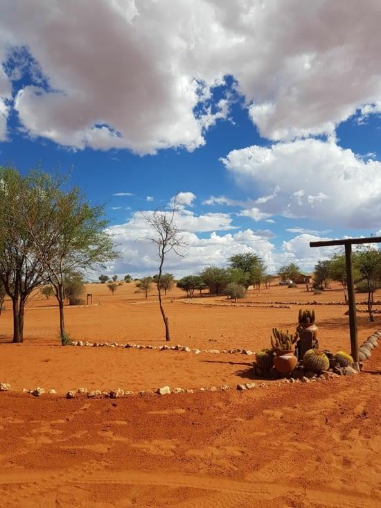Le sable du Kalahari