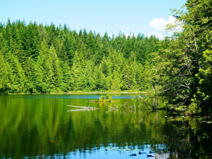 Balade autour du Stump lake