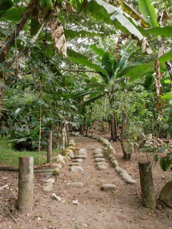 Les jardins de Mandor