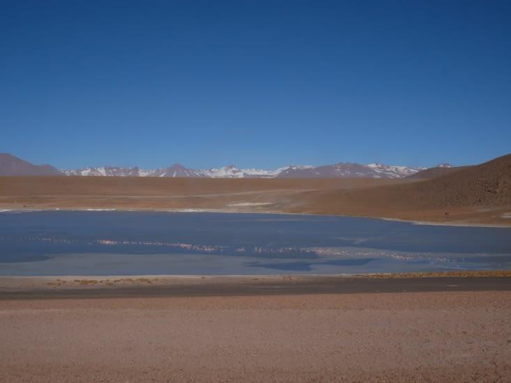 Lagune matinale