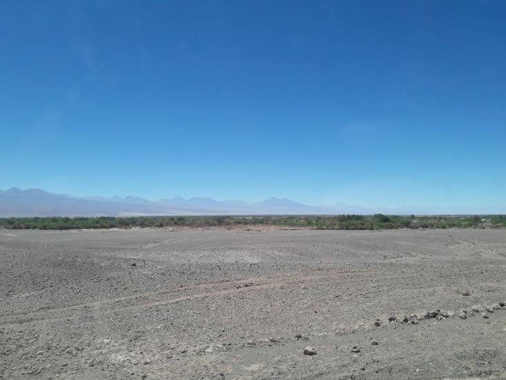 L'oasis : San Pedro de Atacama