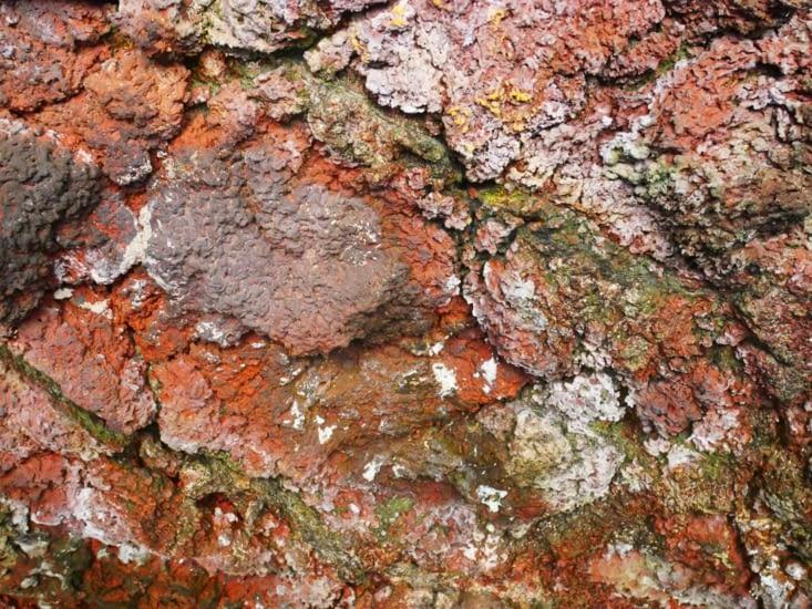 Qui dit grotte volcanique dit couleurs multiples