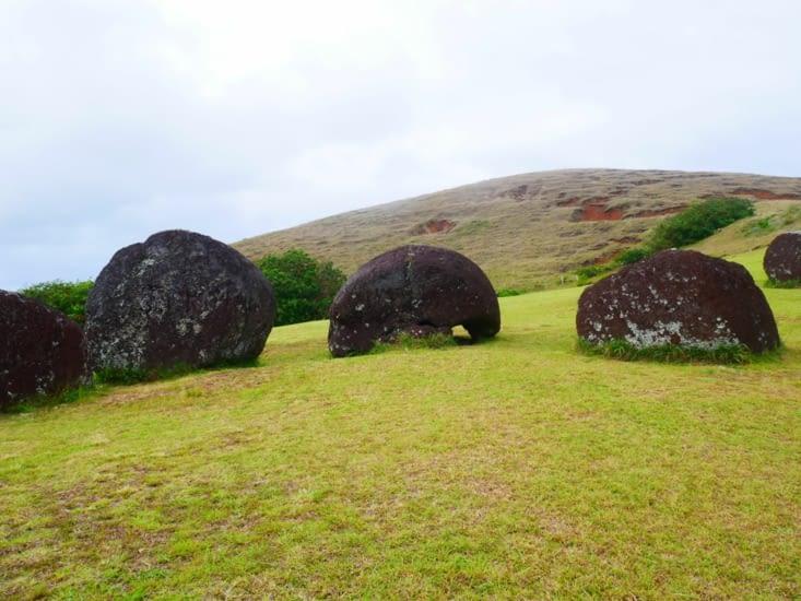 Site de Puna Pau