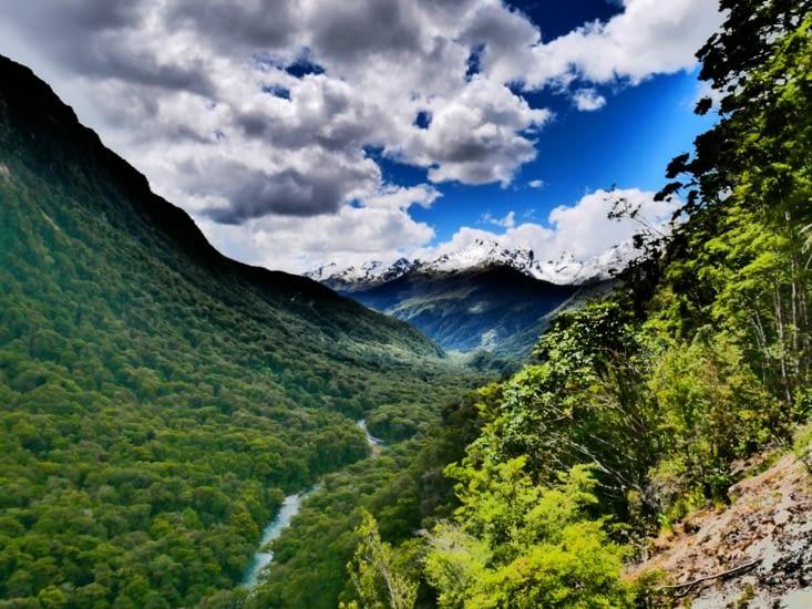 Vallée verdoyante