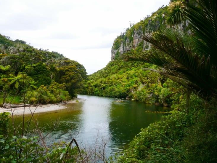 Le long de la rivière de Punakaiki