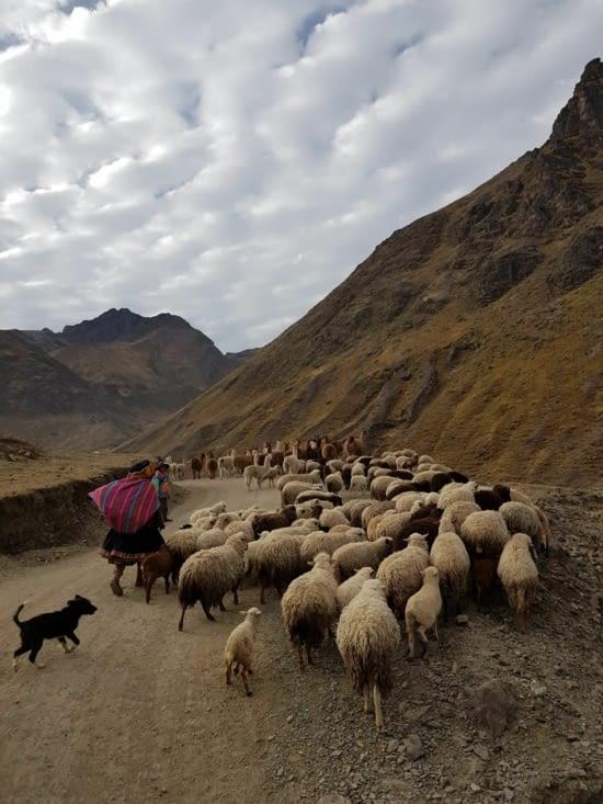 Circuler sur la route reste un peu difficile au Pérou