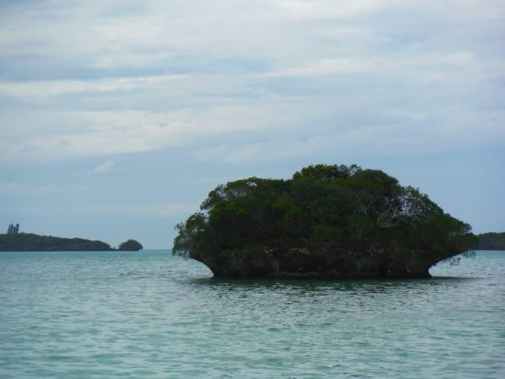 Baie des Crabes