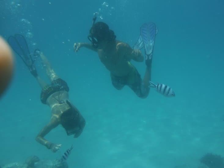 Sous l'océan...