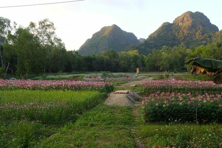 On finit par de beaux champs de fleurs bien fatigués de notre journée.