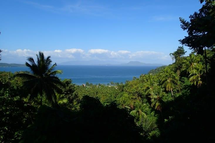 On en profite d'avoir le scoot pour aller un explorer l'île. Un vrai jardin de palmiers !