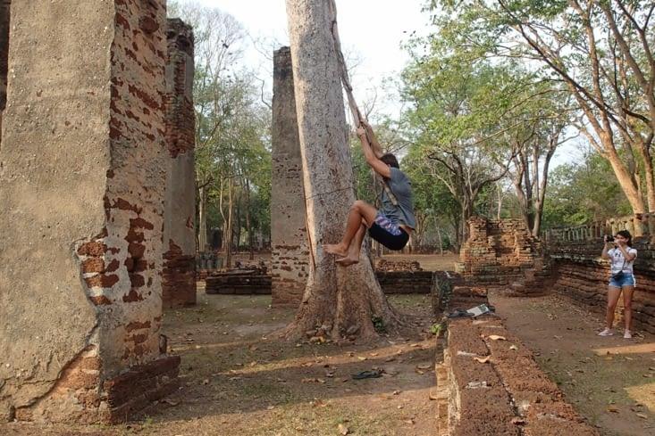 Il y a même des grosses lianes pour faire tarzan au milieu des temples ?.