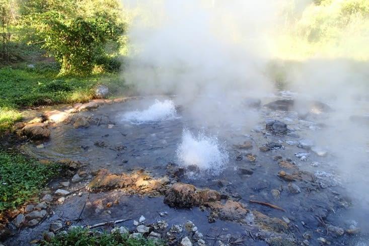 Voici les fameux  geysers. C'est orignal de voir ça en plein milieu de la forêt !