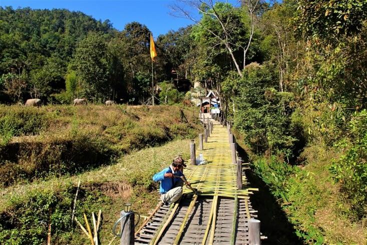 Voici comment est réalisé le pont. Ils tressent le bambou pour créer une plateforme.