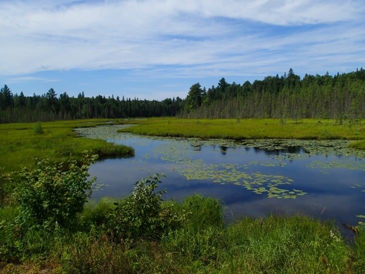 """Après ce lac, on prend la direction du chemin menant aux """"nids d'ours""""..."""