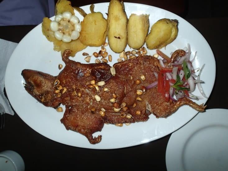 On ne pouvait pas partir du Pérou sans goûter le cochon dinde. Guillaume se lance !