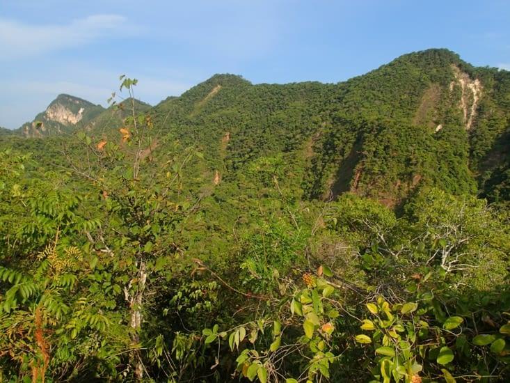 Point de vue depuis le belvédère. Côté Selva (la forêt amazonienne).