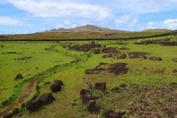 Papa Vaka. Site pétroglyphe (dessins gravés dans la roche).