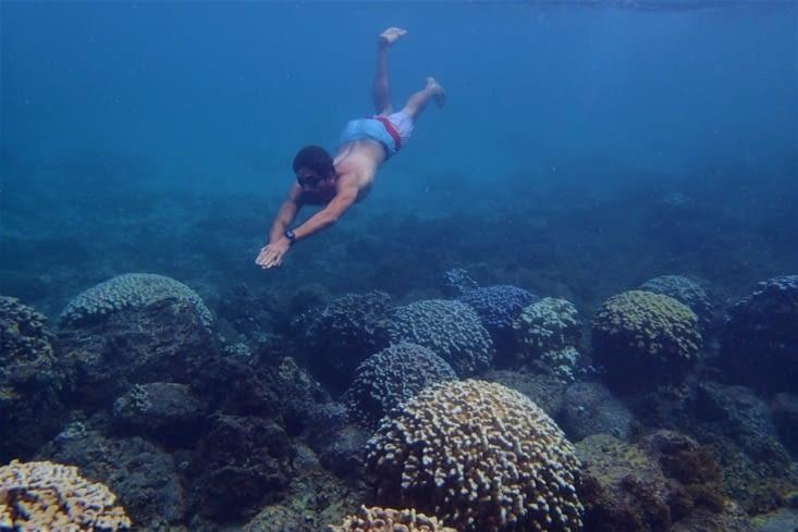 C'est un bon spot pour le snorkeling ! Poissons et coraux à gogo !