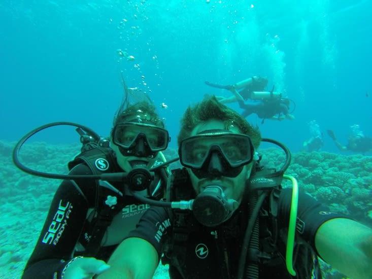 Dernier jour. 2 plongées pour voir les requins citrons et les tortues.