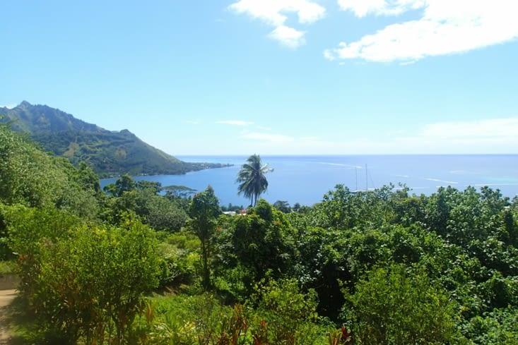 Et la vue depuis le Tropical garden est pas mal aussi !