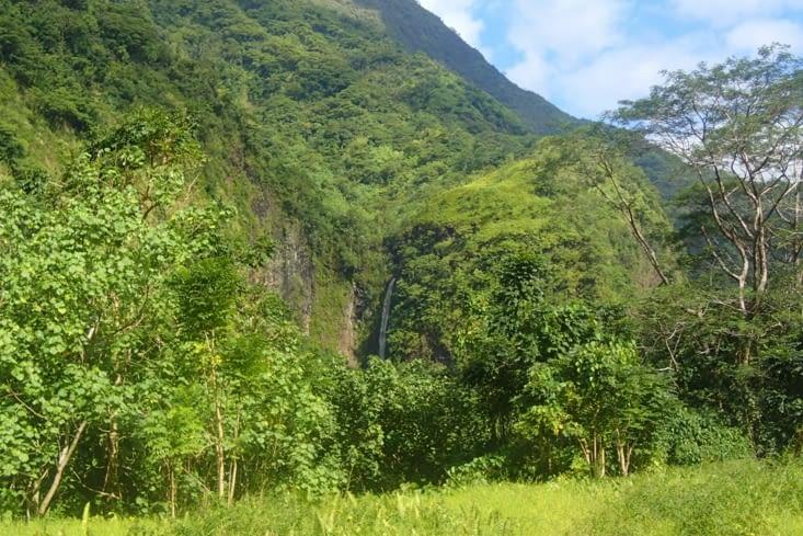 Dernière après-midi avec Pascal dans la vallée de Papenoo.