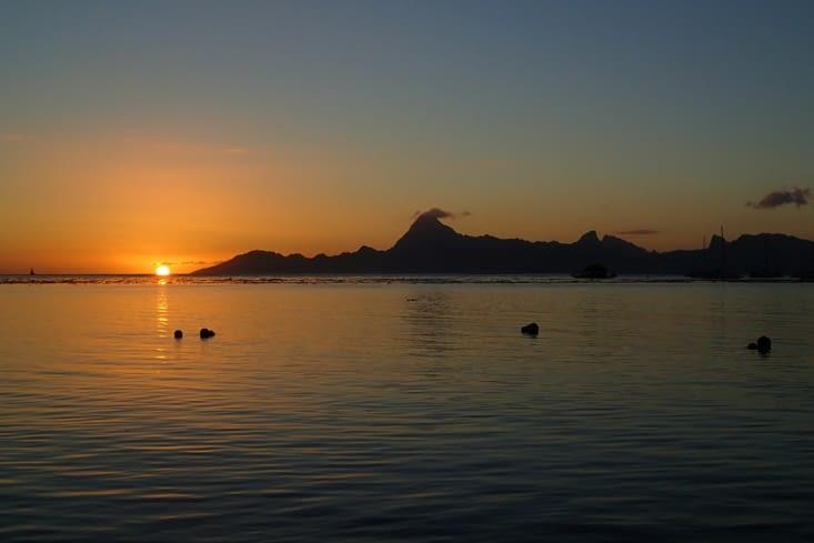 Le couché du soleil derrière l'île de Moorea.