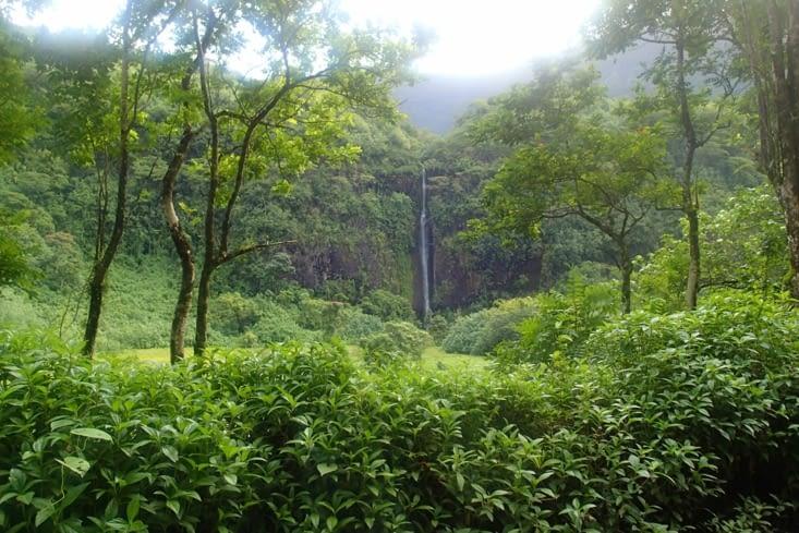 Une belle cascade qu'on aurait bien voulu inaugurer mais pas le temps. Une prochaine fois!