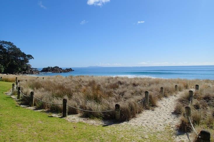Arrêt dans la ville de Tauranga pour espérer pouvoir enfin surfer...