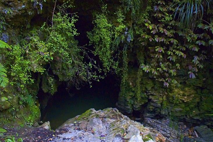 """Aujourd'hui direction Waitomo caves. En Maorie, """"wai"""" veut dire eau et """"tomo"""" cavité."""
