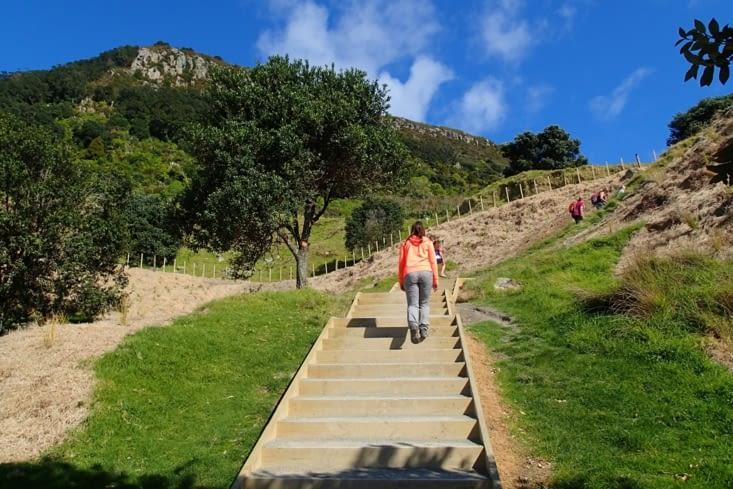 Pas suffisamment de houle aujourd'hui ?... On se lance à l'ascension du mont Mauao.