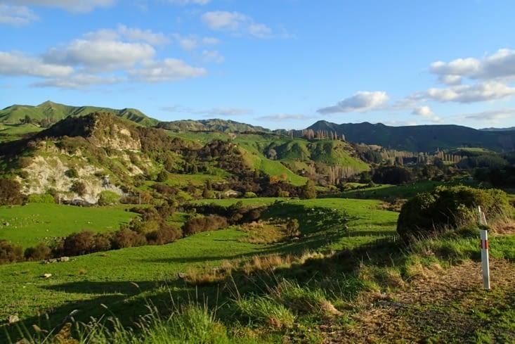 Allez on reprend la route direction Wellington, la capitale de la Nouvelle Zélande.