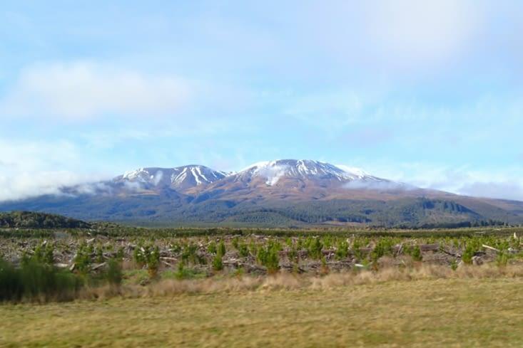 Direction le parc national du Tongariro pour une randonnée de 6h.