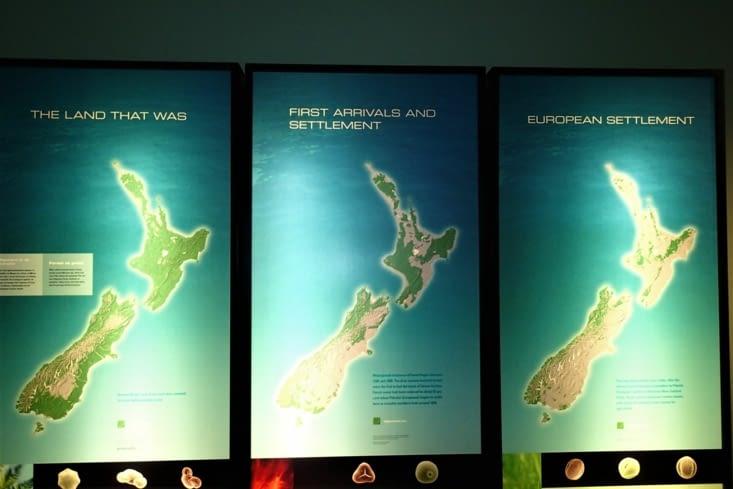 Fait intéressant avant l'arrivée des Européens, les forêts recouvraient toute l'île.