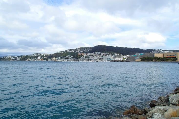 Voilà la pas très belle ville de Wellington. Capitale la plus au sud du monde.