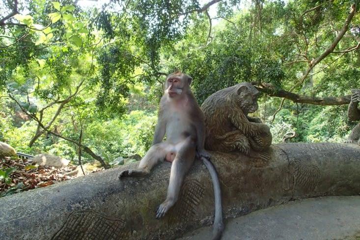 L'animal à côté de son double en statue. Cool Raoul ! Mais compliqué pour la conversation!