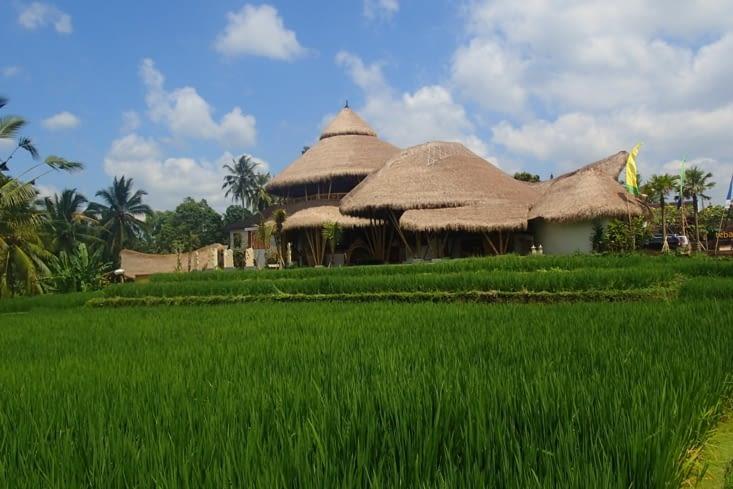 Un hôtel magnifique à l'entrée d'Ubud. Il faut savoir que c'est un lieu très touristique.