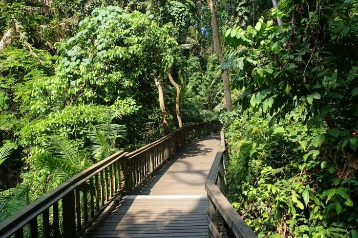 La balade dans la forêt du parc est super sympa. On se croirait dans la jungle !