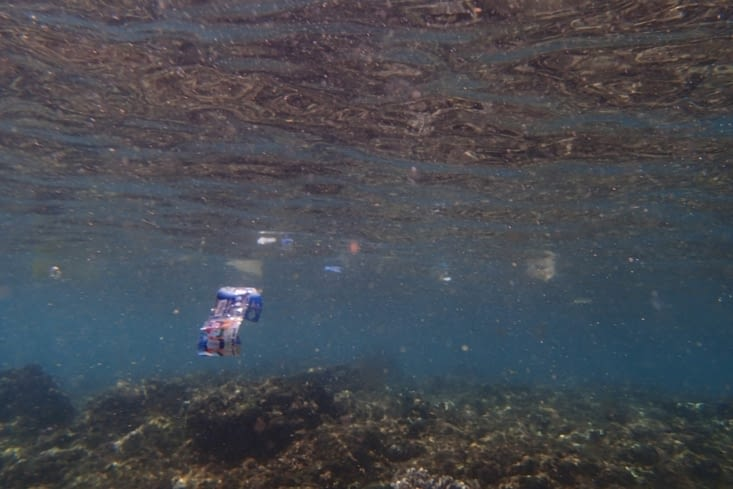 Mais aussi, beaucoup moins beau, de nombreux déchets plastiques sur la surface de l'eau...