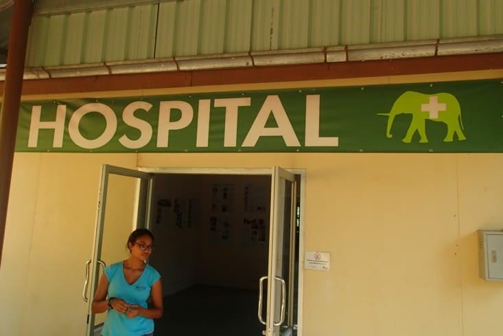 Ce bâtiment est destiné aux vétérinaires chargés de soigner les éléphants blessés.