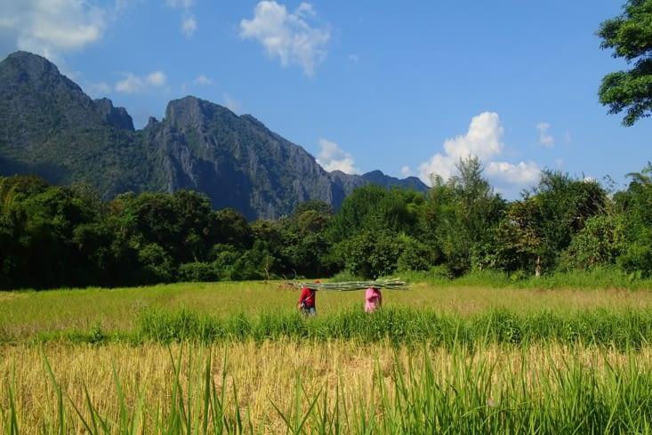 En s'enfonçant dans les rizières, on tombe sur des paysages magnifiques.